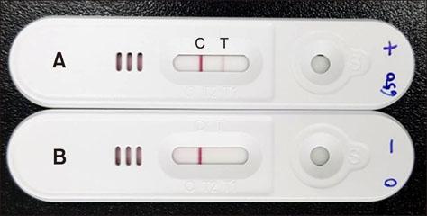 An enhanced immunochromatographic strip test using colloidal
